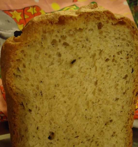 Wheat and whole grain bread 50:50 with olives in Greek style
