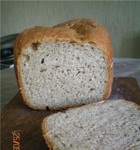 Wheat 100% whole grain bread with onions, on cottage cheese