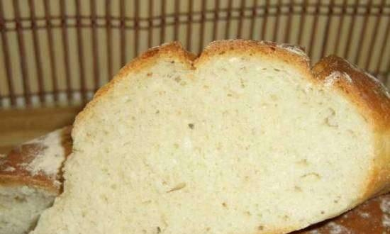 Oven loafs with Cambozola cheese