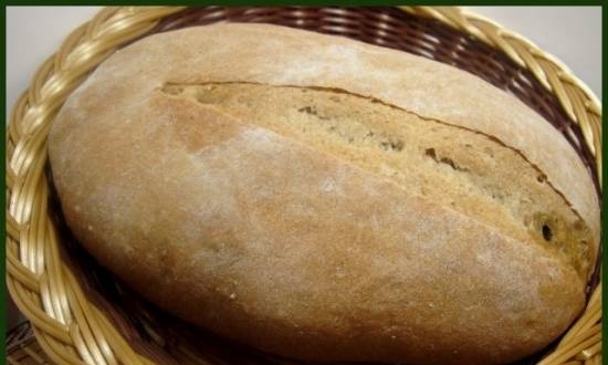 Bread with olives (R. Bertine)