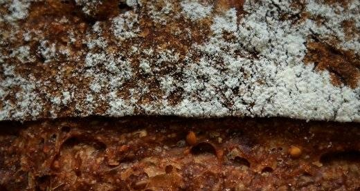 Bread with figs / Pan coi fichi