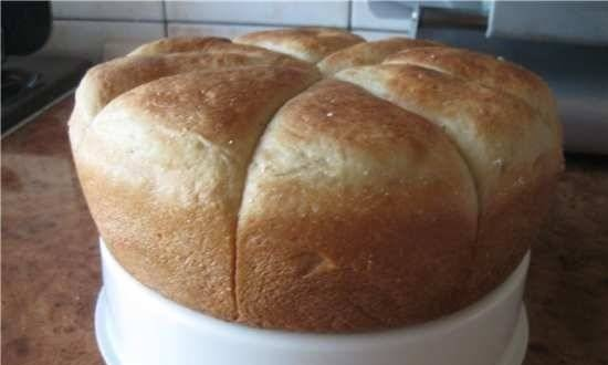 Buns in the Comfort Fy 500 pressure cooker