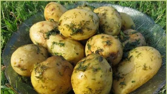 Young potatoes in mint sauce