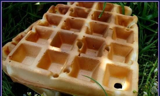 Belgian waffles without eggs