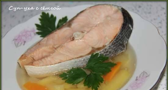 Ukha soup with salmon in 15 minutes (Brand 6051 multicooker-pressure cooker)