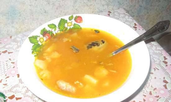 Fish and carrot soup (multicooker SUPRA MCS-5151)