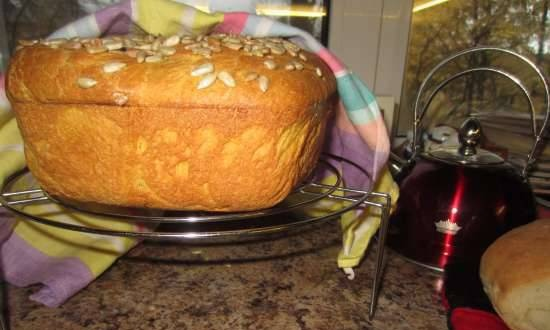 Pumpkin bread on broth with seeds in the oven