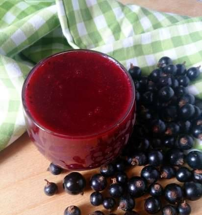 Rich berry jelly in Princess Blender Soup Cooker 212040