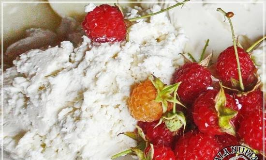 Ricotta (whey cheese made from Anglo-Nubian goat milk)