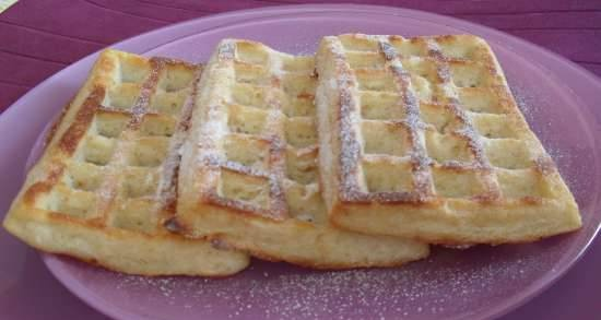 Thick curd-oatmeal waffles with apple