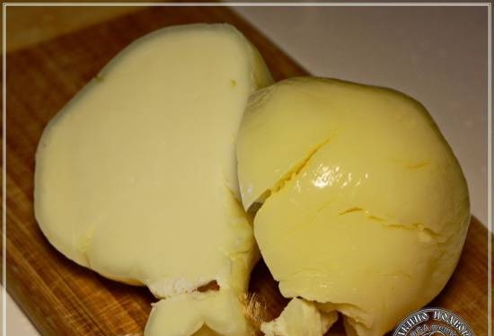 Cachocavallo cheese made from Anglo-Nubian goat milk