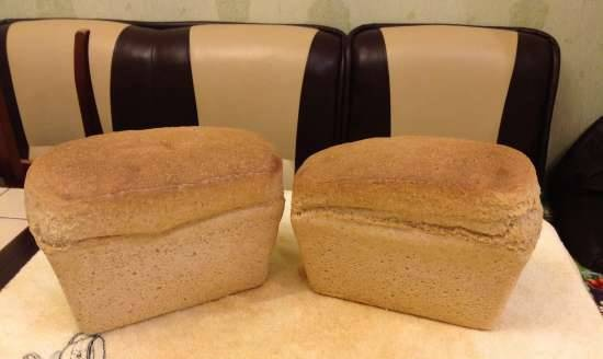 Sourdough wheat bread made from sprouted wheat grains from scratch (in the oven)