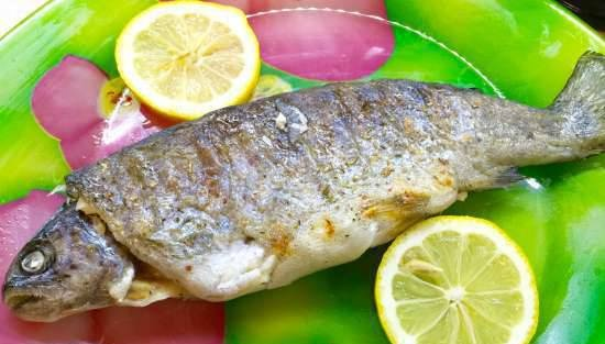 Parchment-wrapped rainbow trout (Steba FG56 grill)