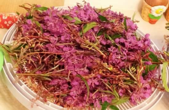 Granulated tea from fireweed flower brushes