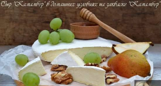 Camembert cheese with sourdough for gourmets