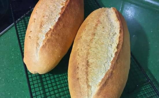 Homemade bread with whole grain and corn flour