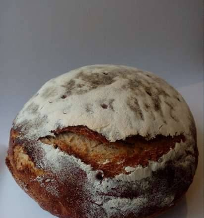 Lithuanian holiday bread with cumin