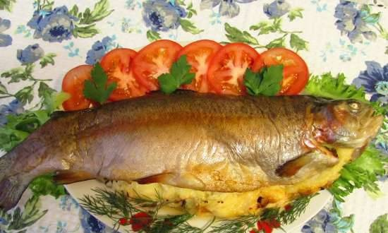 Rainbow trout baked with cheese and onions