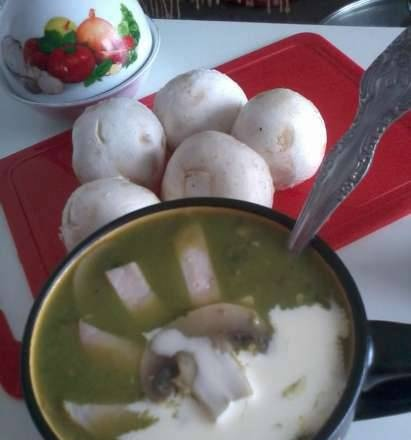 Green broccoli soup with champignons