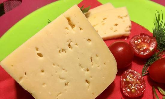 Russian cheese is the pride of domestic cheese makers