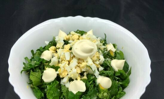 Vitamin salad made from duckweed, nettle, dandelion and other early greens