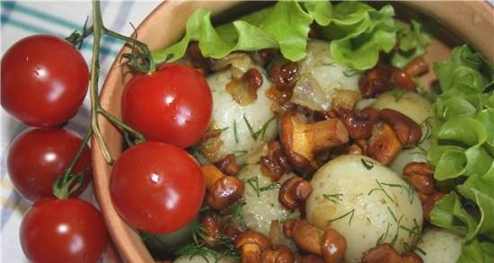 Young potatoes with fried chanterelles